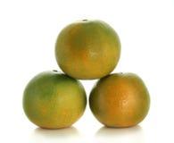 Grüne Tangerine Lizenzfreies Stockfoto