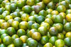 Grüne Tangerinen Stockbild
