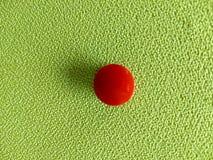 Grüne Tapete Grüner Hintergrund Lizenzfreie Stockfotos