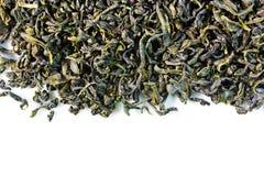 Grüne Teeblätter Stockfotografie