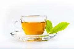 Grüne Teeblatt- und Glasschale schwarzer Tee Lizenzfreies Stockfoto
