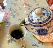 Grüne Teekanne gießen Stockbilder