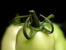 Grüne Tomatenahaufnahme auf blac Stockfoto