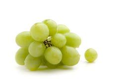 Grüne Trauben Stockbild