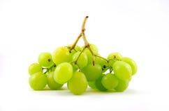 Grüne Trauben. Stockbilder