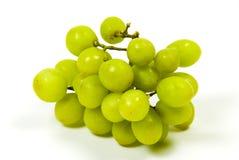 Grüne Trauben Stockfotos
