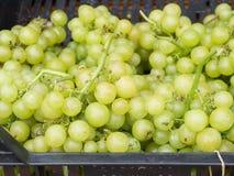 Grüne Trauben an einem Markt Stockbild