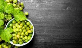 Grüne Trauben in einer Schüssel mit Blättern Lizenzfreies Stockbild