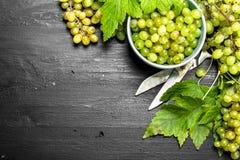 Grüne Trauben in einer Schüssel mit Blättern Stockfoto