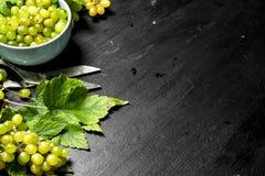 Grüne Trauben in einer Schüssel mit Blättern Stockbilder