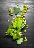 Grüne Trauben in einer Schüssel mit Blättern Stockfotografie