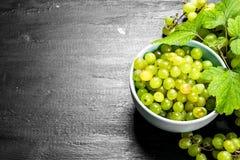 Grüne Trauben in einer Schüssel mit Blättern Lizenzfreies Stockfoto