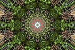 Grüne und braune Blätter Stockfotografie