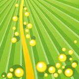 Grüne und gelbe abstrakte Hintergrundvektorillustration Stockbild