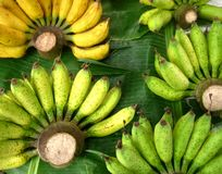 Grüne und gelbe Banane Stockbilder