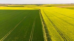 Grüne und gelbe Felder am Ackerland, Vogelperspektive lizenzfreies stockfoto