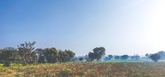 Grüne und nebelige Landschaft von landwirtschaftlichen Feldern des nördlichen Teils von Indien stockbild