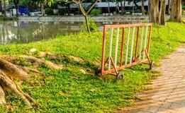 Grüne und neue Zustand im Garten Lizenzfreie Stockfotos