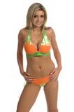 Grüne und orange Gleichheit-Färbung Lizenzfreie Stockbilder