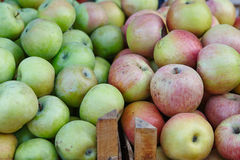 Grüne und rote Äpfel Lizenzfreie Stockfotografie
