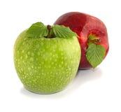 Grüne und rote Äpfel mit Blättern Lizenzfreie Stockbilder
