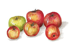 Grüne und rote Apfelfrüchte Lizenzfreie Stockfotos