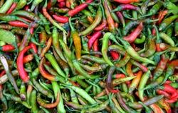 Grüne und rote Paprikas Stockbild