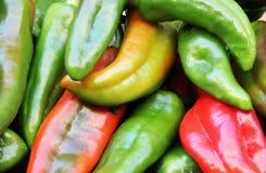 Grüne und rote Pfeffer Stockfotos