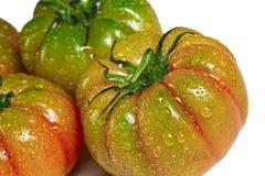 Grüne und rote Tomaten Stockbild