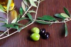 Grüne und schwarze Oliven Lizenzfreie Stockfotografie