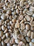 Grüne ungebratene Kaffeebohnen Stockbilder