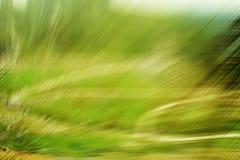Grüne Unschärfennatur Lizenzfreies Stockbild