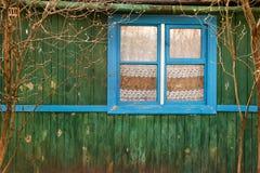 Grüne Wand des Hauses mit Fenster Lizenzfreies Stockfoto
