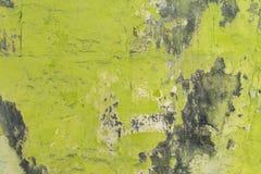 Grüne Wand mit Formhintergrund Lizenzfreies Stockfoto
