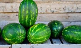 Grüne Wassermelonenhintergründe Lizenzfreie Stockbilder