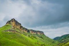 Grüne Weiden Sommerlandschaft mit den Bergen Lizenzfreie Stockfotografie