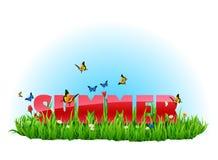 Grüne Wiese des Sommers Lizenzfreie Stockfotos