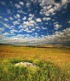 Grüne Wiese im Berg Lizenzfreies Stockfoto