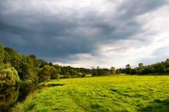 Grüne Wiese im Sommer Stockfotos
