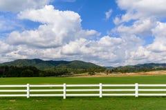 Grüne Wiese mit blauem Himmel und weißem Zaun Stockbild
