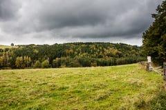 Grüne Wiese mit dunklen Wolken Stockfotografie
