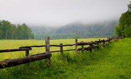 Grüne Wiese mit Zaun Stockfotografie