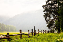 Grüne Wiese mit Zaun Lizenzfreies Stockfoto