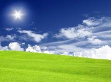 Grüne Wiese u. blauer Himmel stockfoto