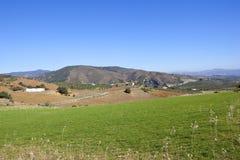 Grüne Wiese und Berge von Andalusien Lizenzfreies Stockbild