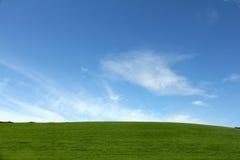 Grüne Wiese und blauer Himmel lizenzfreie stockfotografie