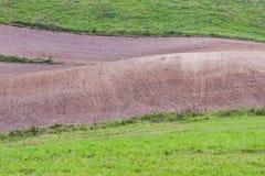Grüne Wiese und gepflogenes Feld Lizenzfreies Stockbild