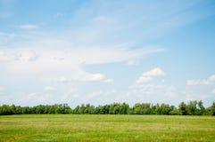 Grüne Wiese unter blauem Himmel stockfotografie