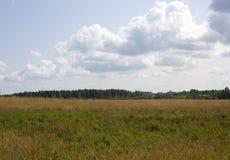 Grüne Wiese unter blauem Himmel mit Wolken von Weiß Stockfotos