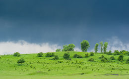 Grüne Wiese unter Donner-Himmel Stockbilder